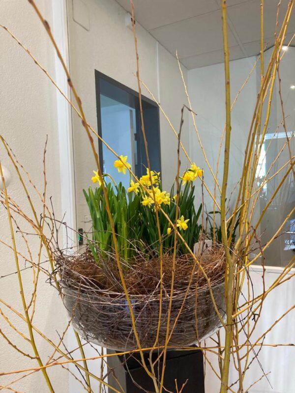Blumenaragement schenk-blumen.ch V2